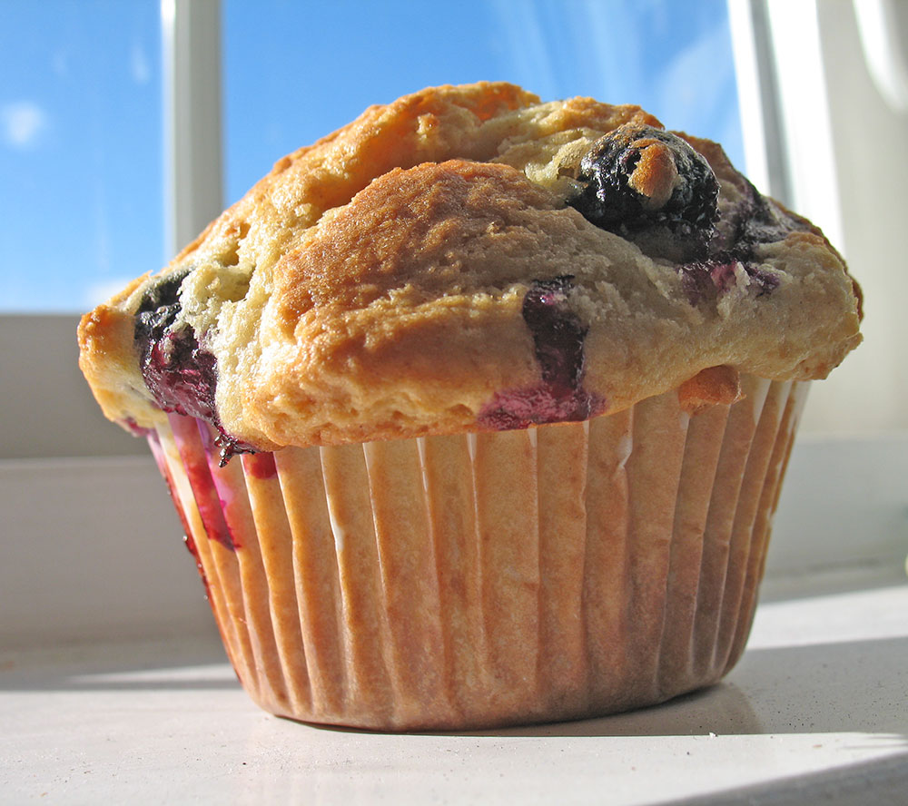 blueberry muffins bakery blueberry muffins with blueberry muffins best ...